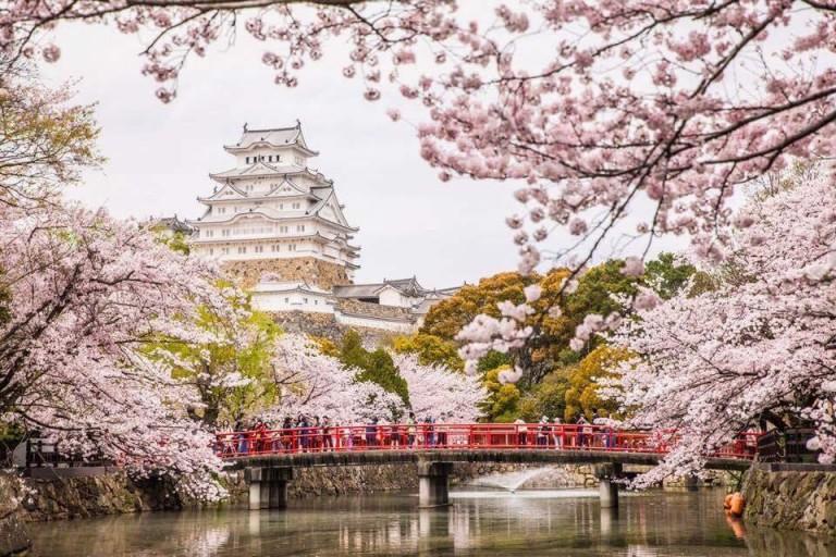 Japón y sus templos